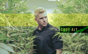 Cody Alt and his cannabis businesses